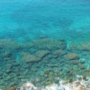Mare, acque più trasparenti dopo il lockdown