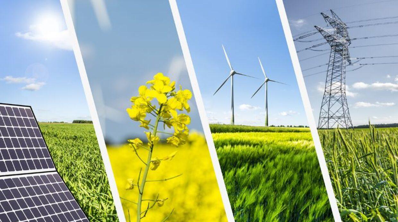 Per la prima volta le rinnovabili hanno prodotto più elettricità delle fossili