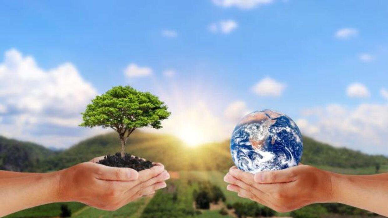 Giornata mondiale dell'ambiente. Come si è festeggiato in giro per il mondo